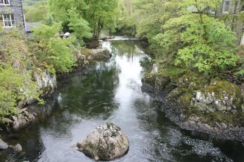 16 upstream on walk