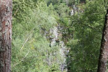 14 woodlands on track