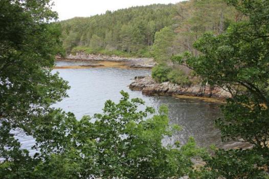 41 Loch Ewe