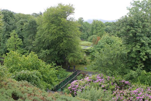 13 Dunvegan Castle Gardens