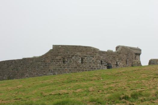 25 Torry Port Battery