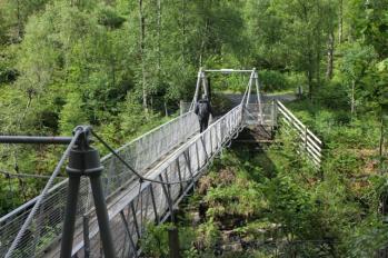 11 suspension bridge