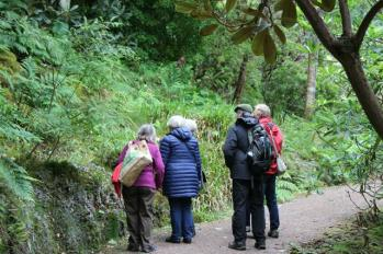 38 guided tour group