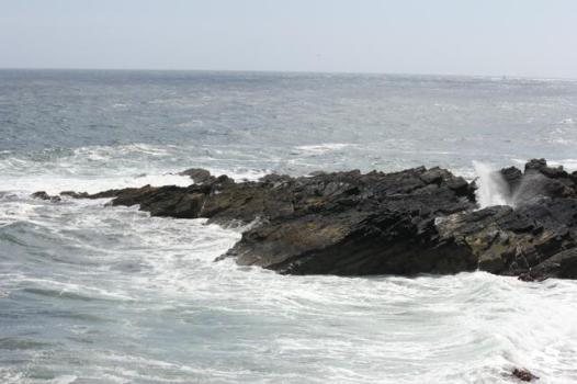 13 Moray Firth