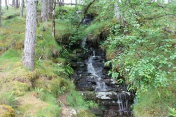 13 brook on track