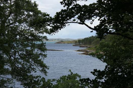 40 view from gardens Loch Ewe