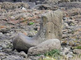 18 The Boot Giant's Causeway
