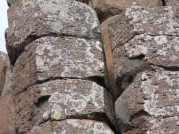 20 Giant's Causeway