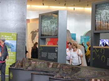 03 display of Giant's Causeway