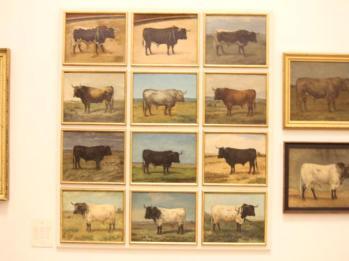 13 Bullring Museum