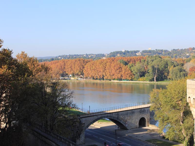 18 Avignon