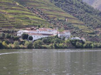 14 Douro River cruise