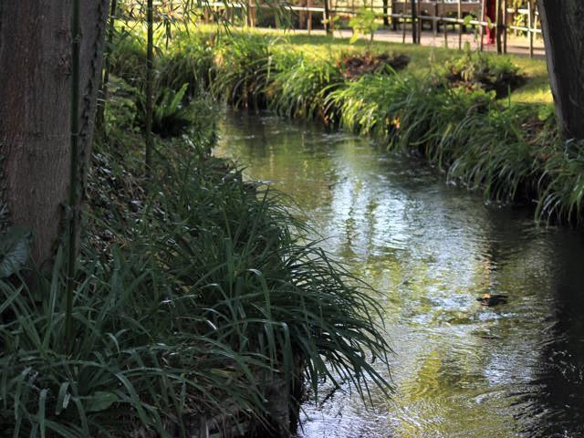 85 Monet's Gardens