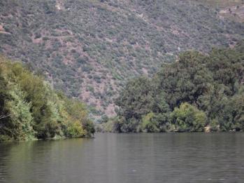 15 Douro River cruise