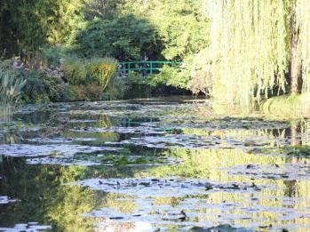 87 Monet's Gardens