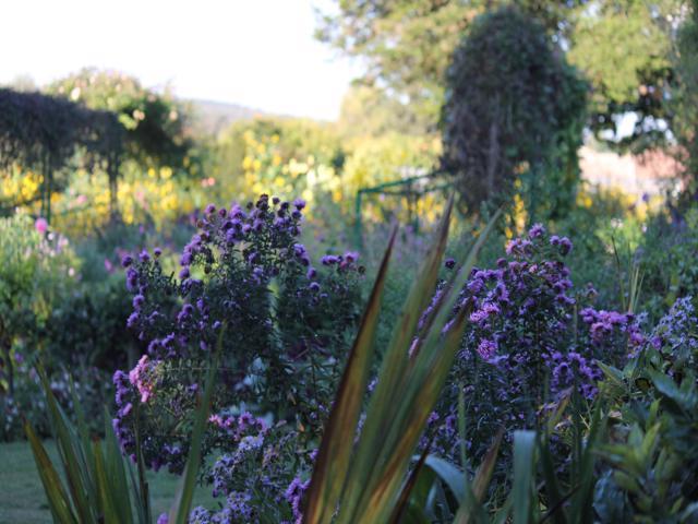 59 Monet's Garden Giverny