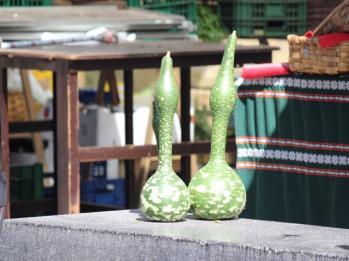 09 vegetable at La Brexta Market