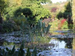 91 Monet's Gardens