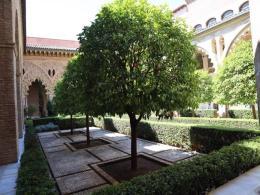 109 courtyard with orange trees - Aljaferia Palace